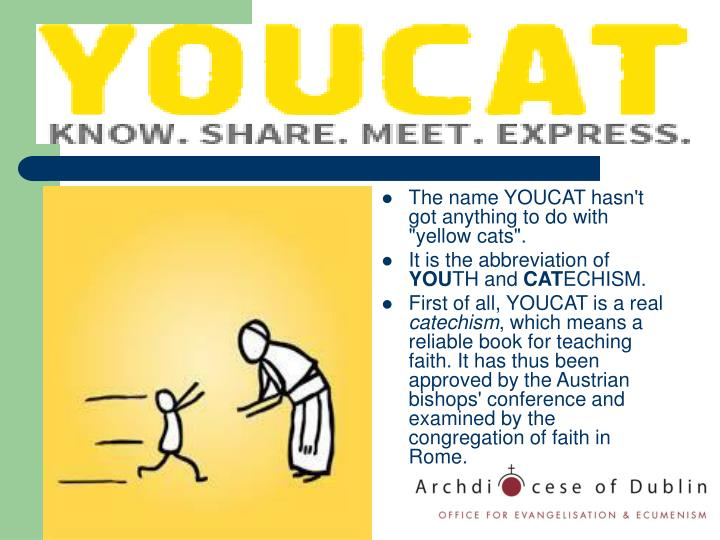 "The name YOUCAT hasn't got anything to do with ""yellow cats""."