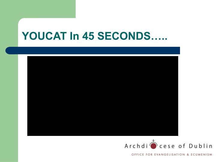YOUCAT In 45 SECONDS…..