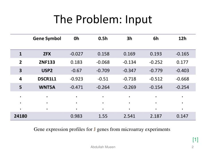 The Problem: Input