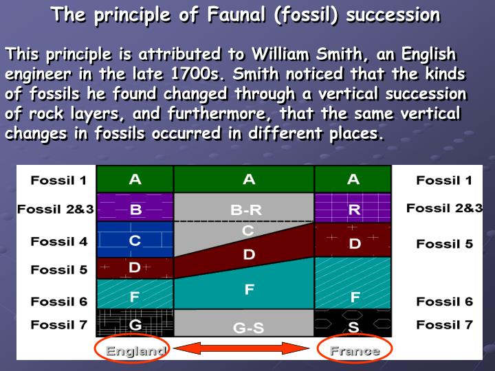 The principle of Faunal (fossil) succession