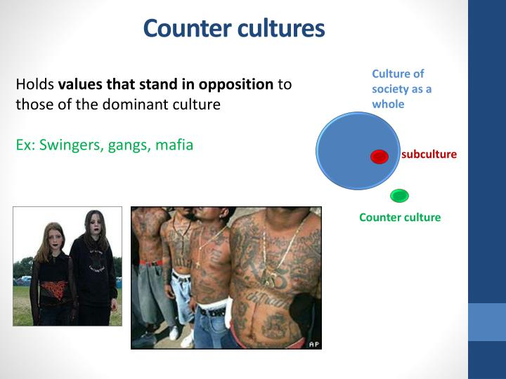 Counter cultures