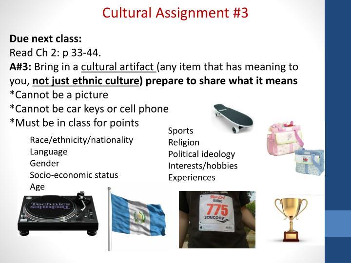 Cultural Assignment #3