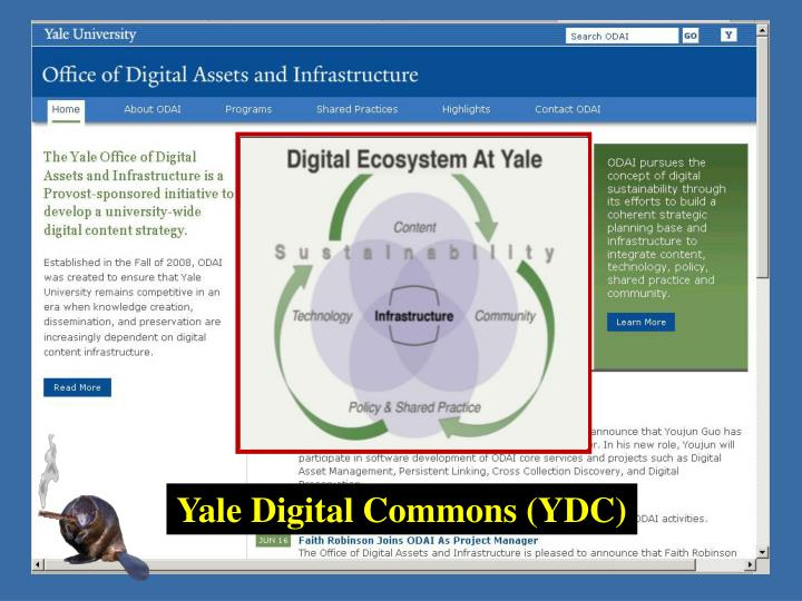 Yale Digital Commons (YDC)