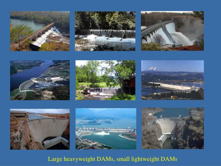 Large heavyweight DAMs, small lightweight DAMs