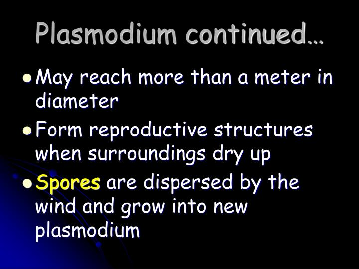 Plasmodium continued…