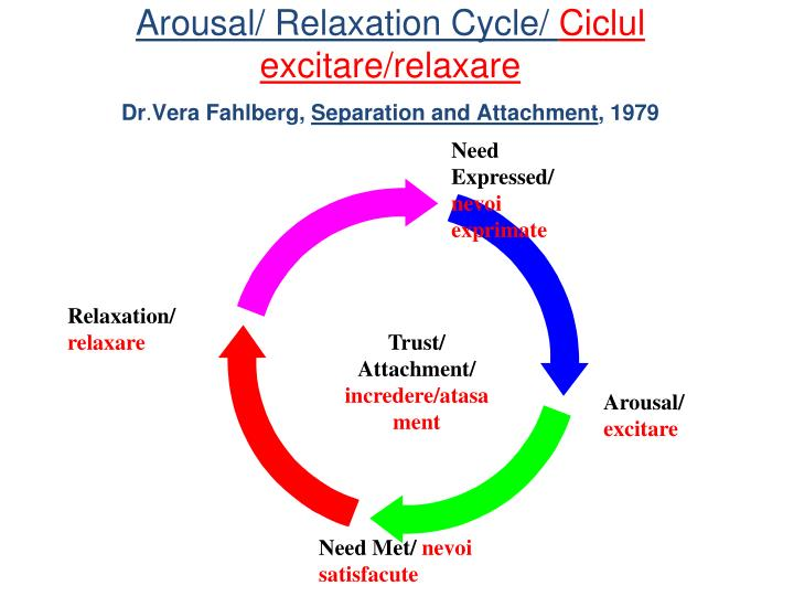 Arousal/ Relaxation Cycle/