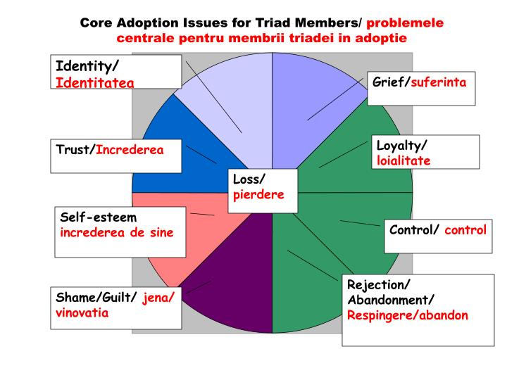 Core Adoption Issues for Triad Members/