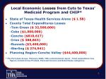 local economic losses from cuts to texas medicaid program and chip