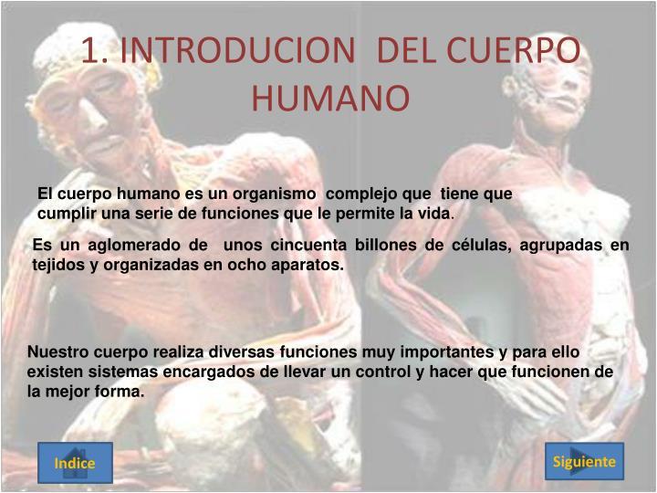 1. INTRODUCION  DEL CUERPO HUMANO