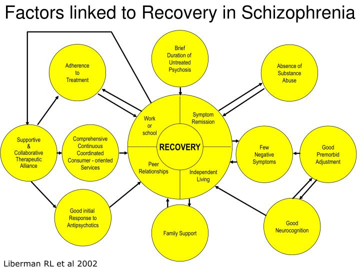 Factors linked to Recovery in Schizophrenia
