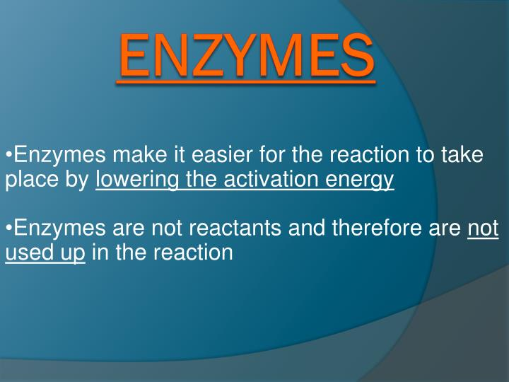 Enzymes make it easier for the reaction to take place by