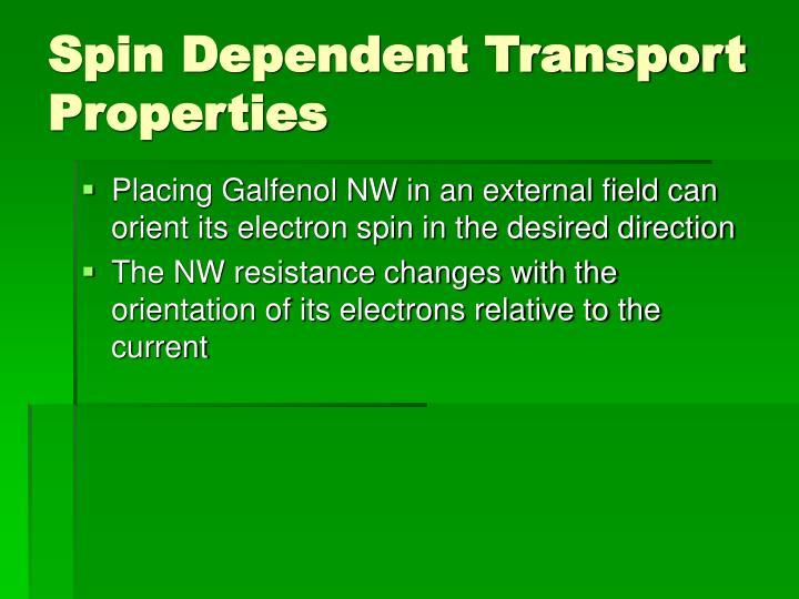 Spin Dependent Transport Properties