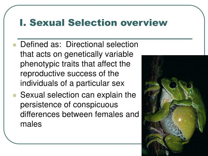 I sexual selection overview