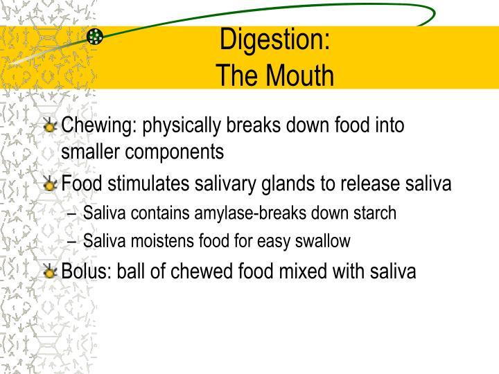 Digestion: