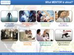 what mentor is about