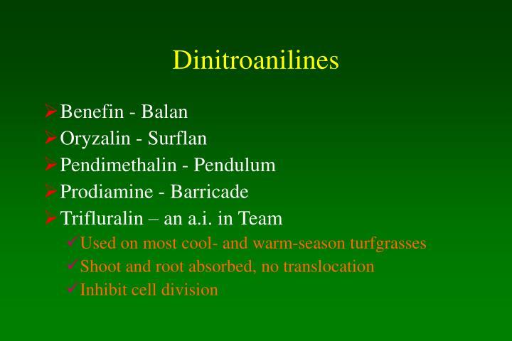 Dinitroanilines