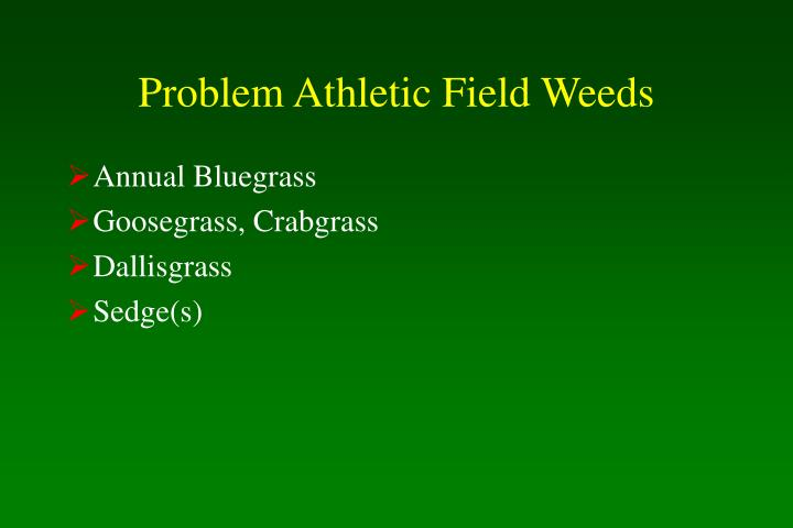 Problem Athletic Field Weeds