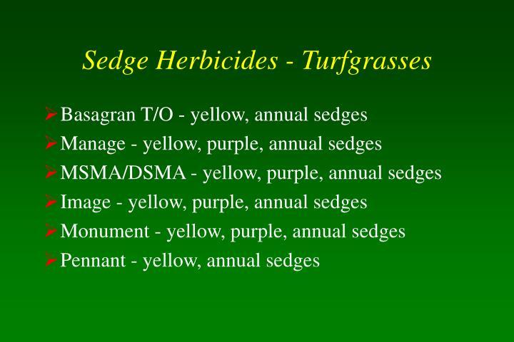 Sedge Herbicides - Turfgrasses
