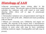 histology of aah