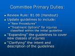 committee primary duties