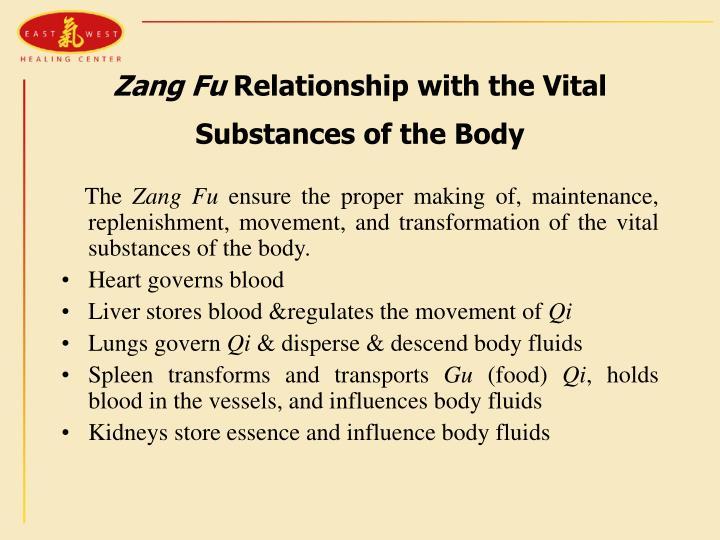 Zang Fu