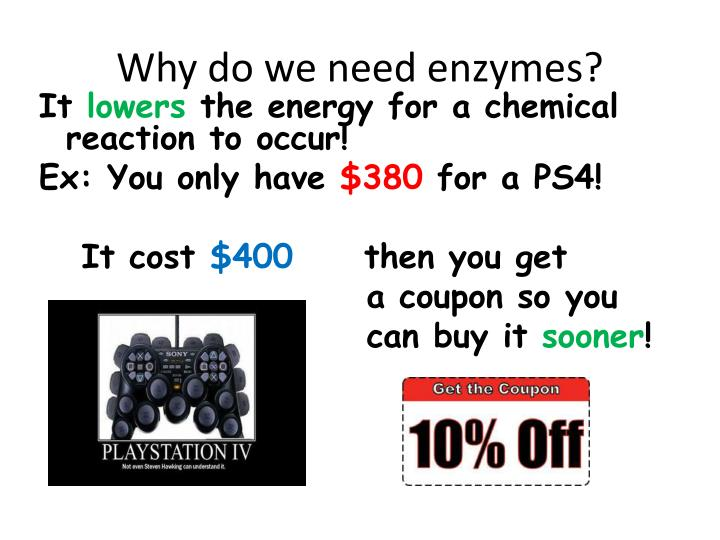 Why do we need enzymes