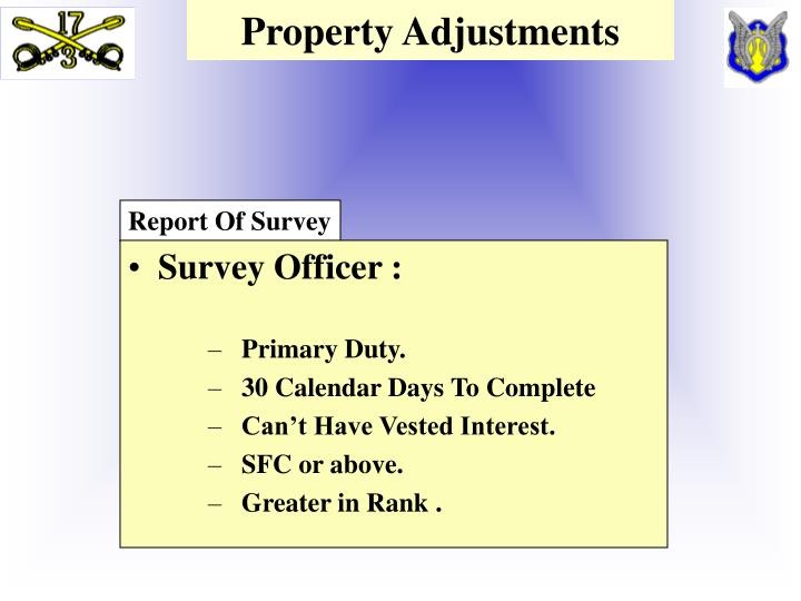 Property Adjustments