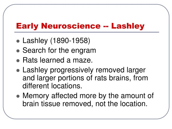 Early Neuroscience -- Lashley