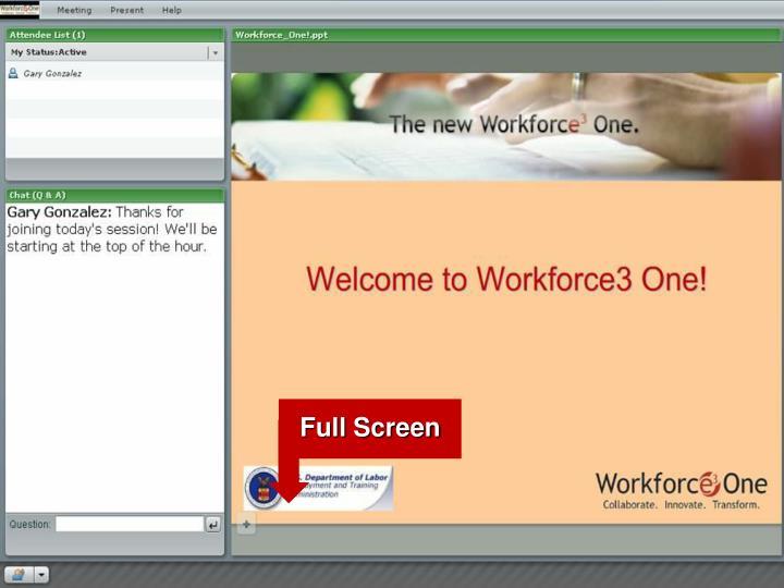 Webinar Platform: Participant View