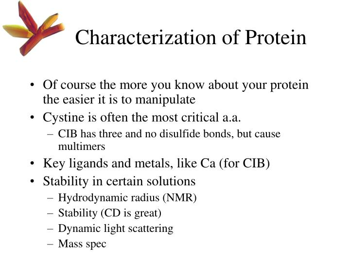Characterization of Protein
