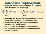adenosine triphosphate1