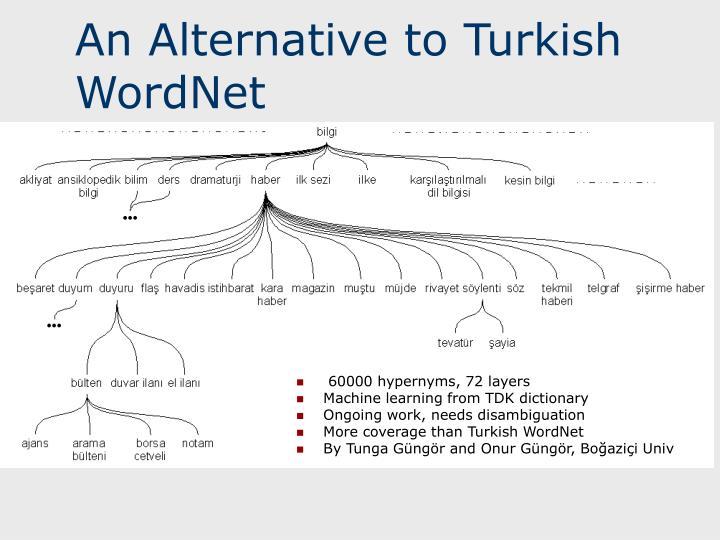 An Alternative to Turkish WordNet