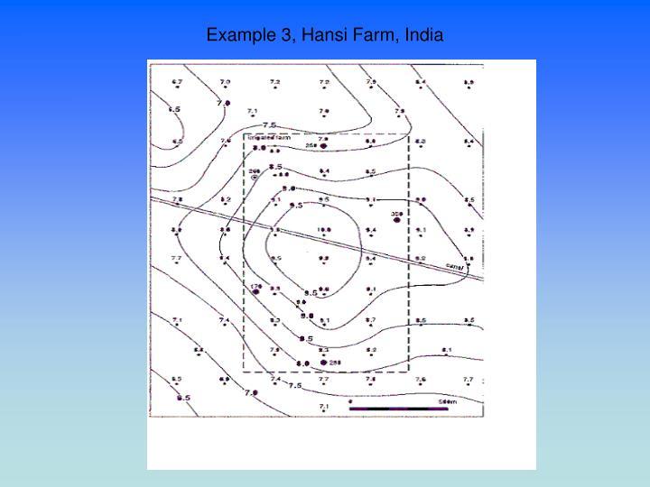 Example 3, Hansi Farm, India