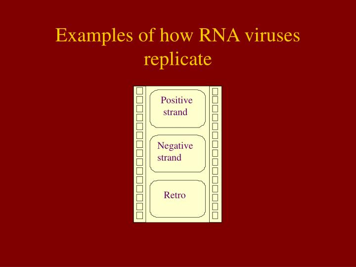 Examples of how RNA viruses replicate