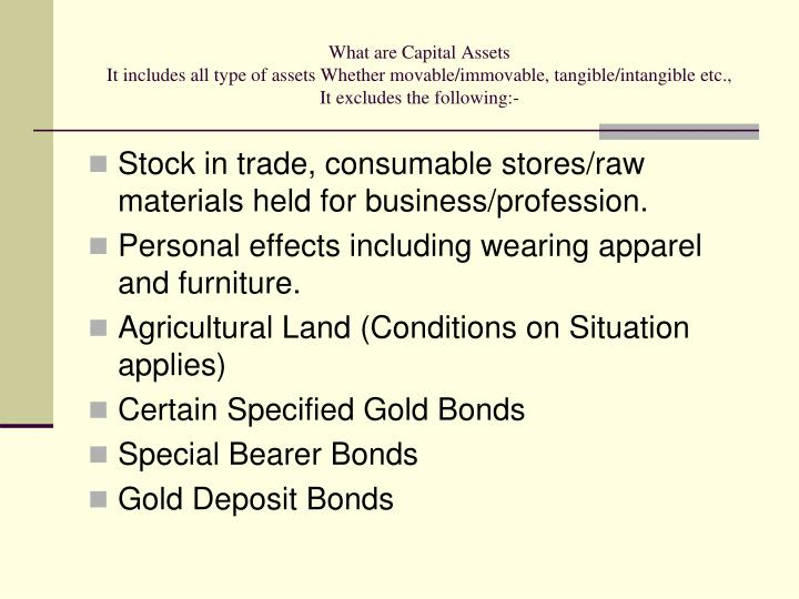 What are Capital Assets