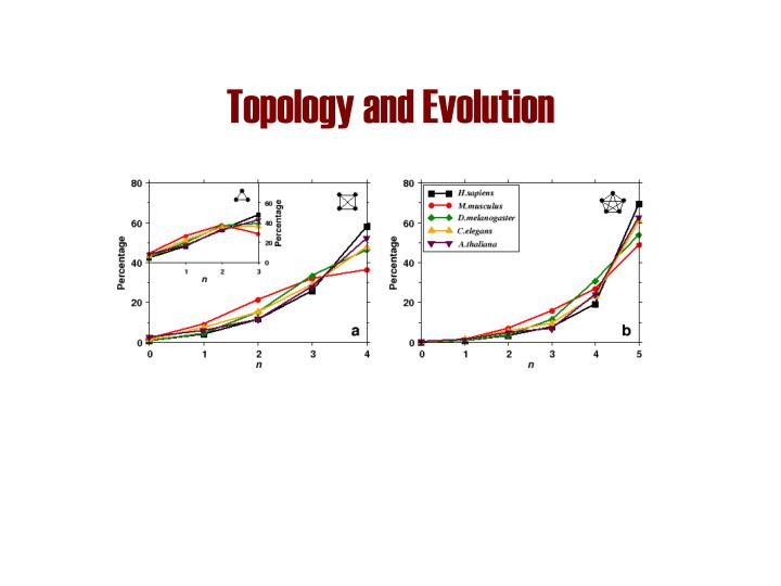 Topology and Evolution