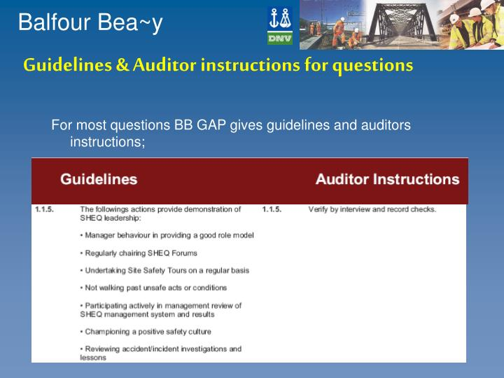 Guidelines & Auditor instructions for questions