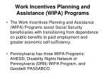 work incentives planning and assistance wipa programs