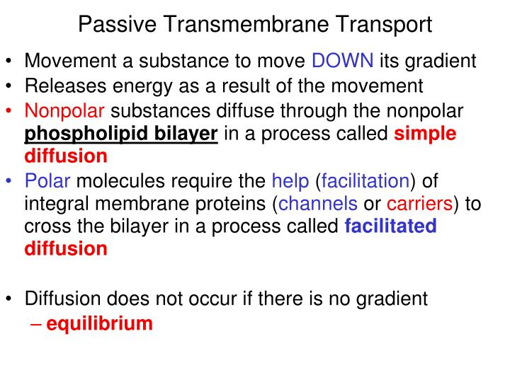 Passive Transmembrane Transport
