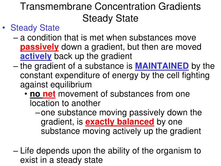 Transmembrane Concentration Gradients
