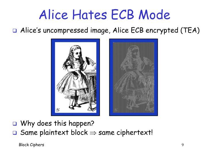 Alice Hates ECB Mode