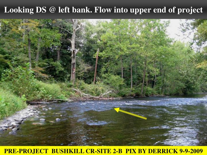 Looking DS @ left bank. Flow into upper end of project