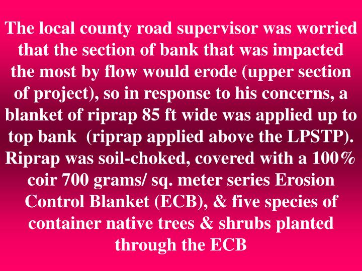 The local county road supervisor was worried that the section of bank that was impacted the most by flow would erode (upper section of project), so in response to his concerns, a blanket of riprap 85 ft wide was applied up to top bank  (riprap applied above the LPSTP).  Riprap was soil-choked, covered with a 100% coir 700 grams/ sq. meter series Erosion Control Blanket (ECB), & five species of container native trees & shrubs planted through the ECB