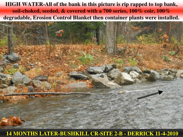 HIGH WATER-All of the bank in this picture is rip rapped to top bank, soil-choked, seeded, & covered with a 700 series, 100% coir, 100% degradable, Erosion Control Blanket then container plants were installed.