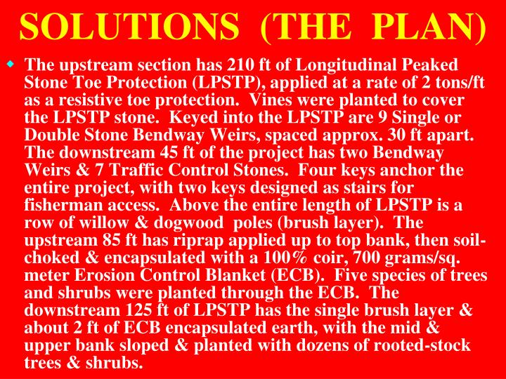 SOLUTIONS  (THE  PLAN)