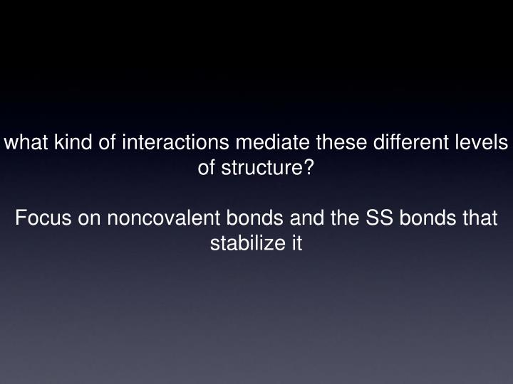 what kind of interactions mediate these different levels of structure?