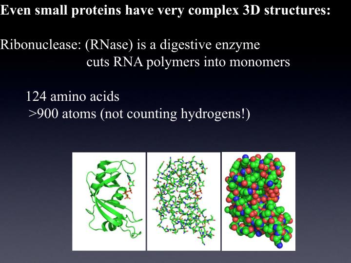 Even small proteins have very complex 3D structures: