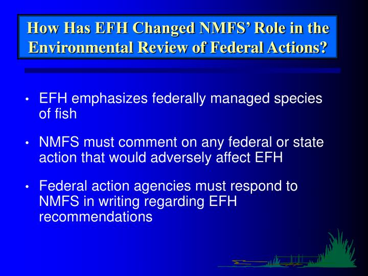 How Has EFH Changed NMFS' Role in the Environmental Review of Federal Actions?