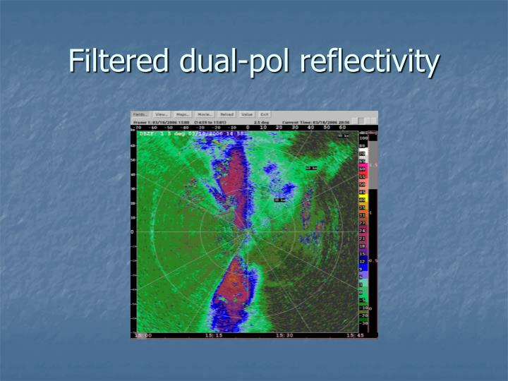 Filtered dual-pol reflectivity