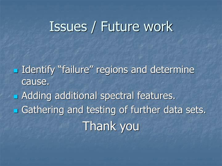 Issues / Future work